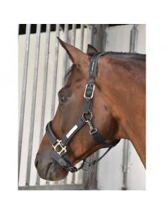 Rider by Horse Grimma Platinum