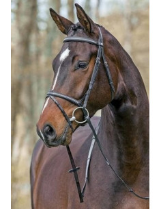 Mountain Horse träns Meteor