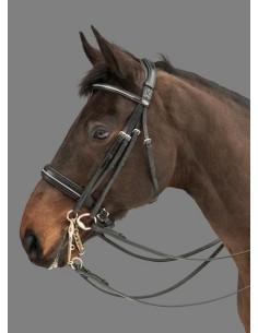Mountain Horse Rubicon Multi bridle