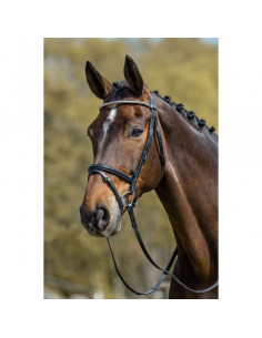 Mountain Horse träns Milton